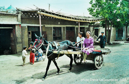 turpan horse drawn cart