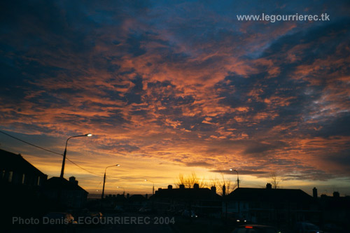 sunrise cork