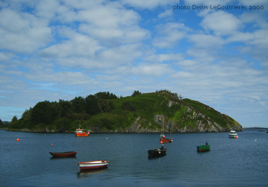 near Lough Hyne